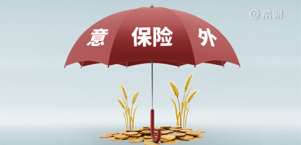 """600-290-保险-一把伞-,上面写""""意外保险""""。.jpg"""